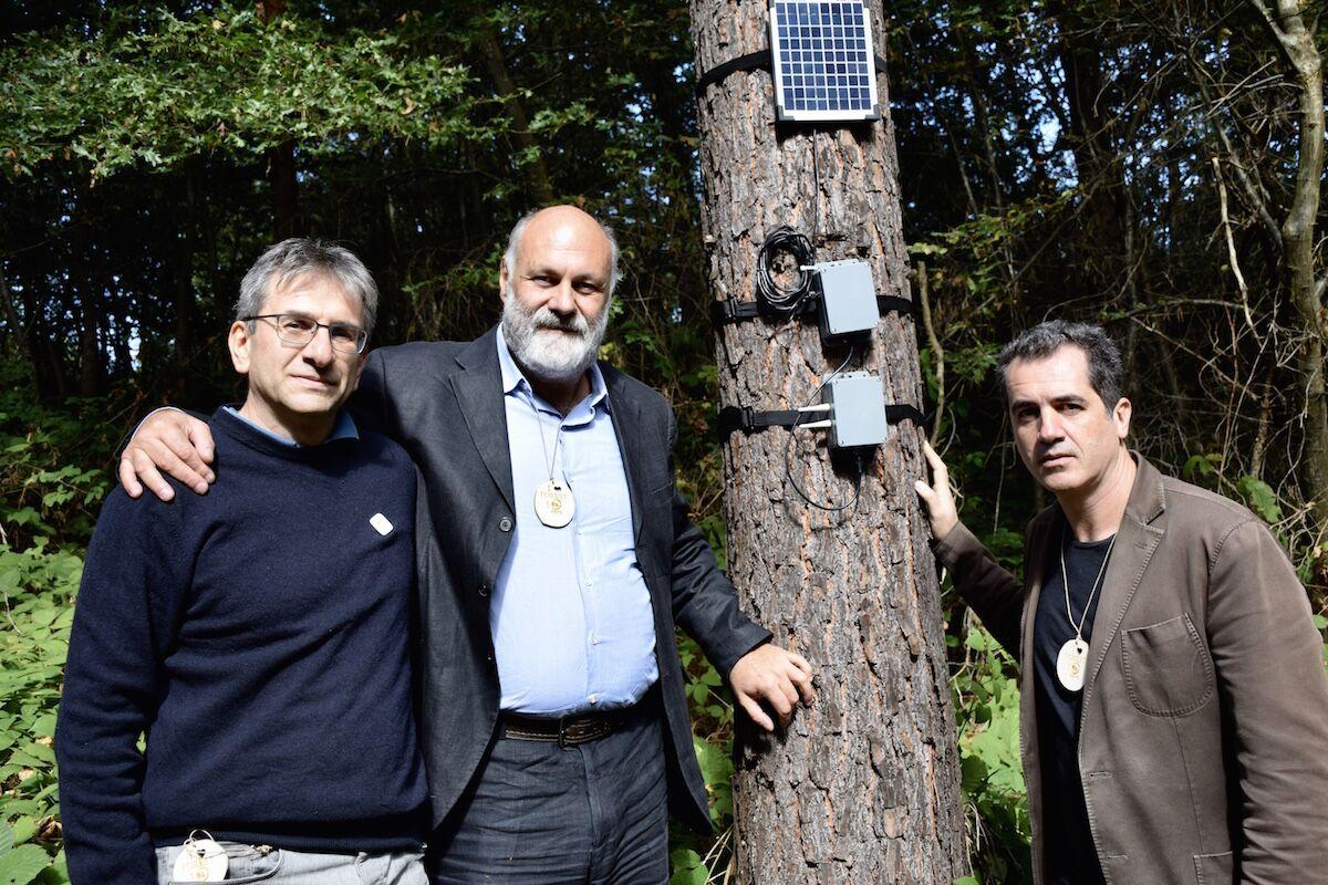 Un bosque en Italia cuenta el cambio climático