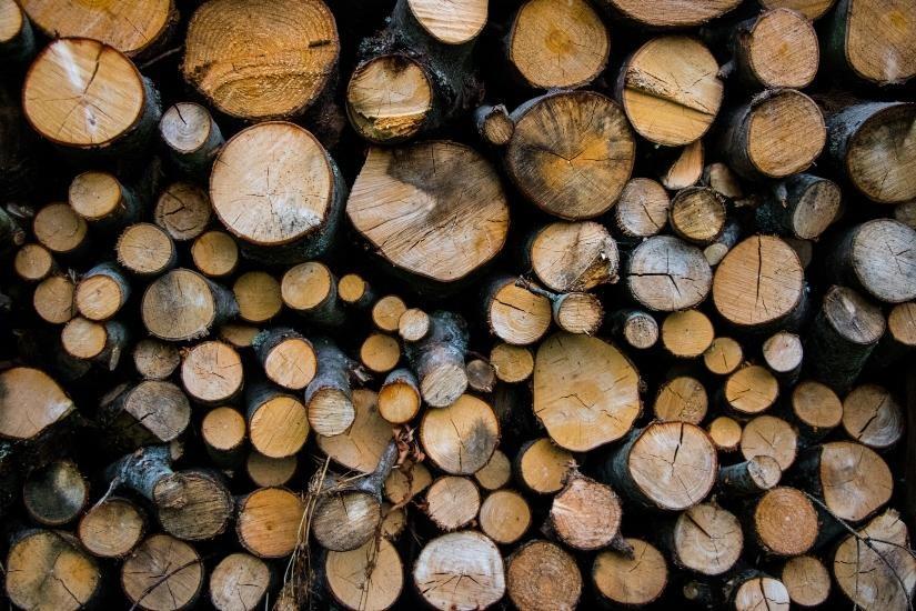 La industria gallega de la madera prevé una disminución del 26% en su facturación
