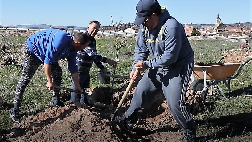 Alcocer planta 100 árboles en un fin de semana