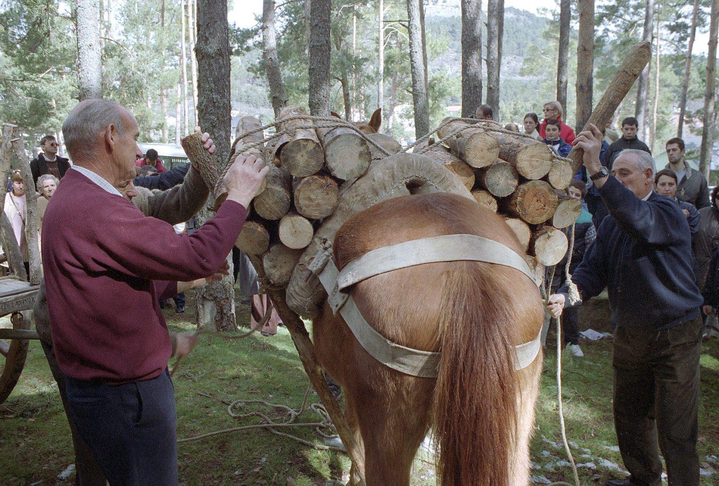 El Espinar celebra el 15 de marzo la Fiesta de los Gabarreros