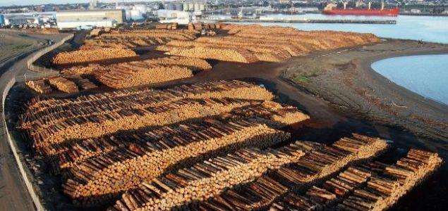 La industria maderera china se está recuperando gradualmente