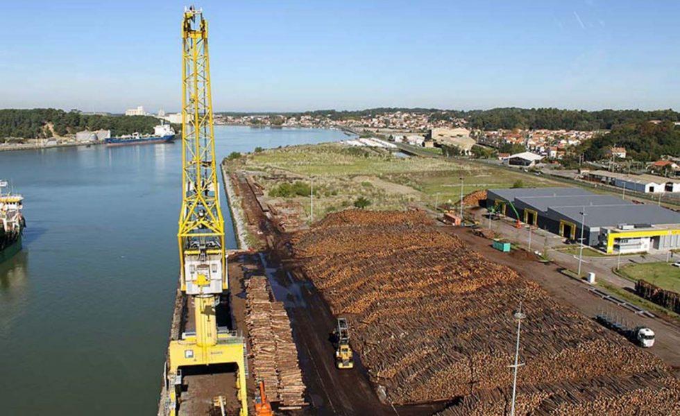 El puerto de Baiona presenta su potencialidad para la madera a ADEMAN