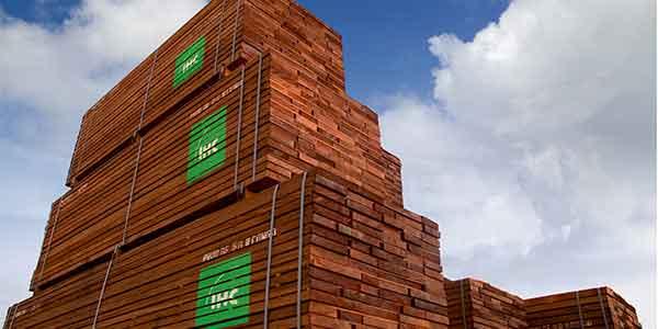 Impacto de COVID-19 en el comercio de madera tropical