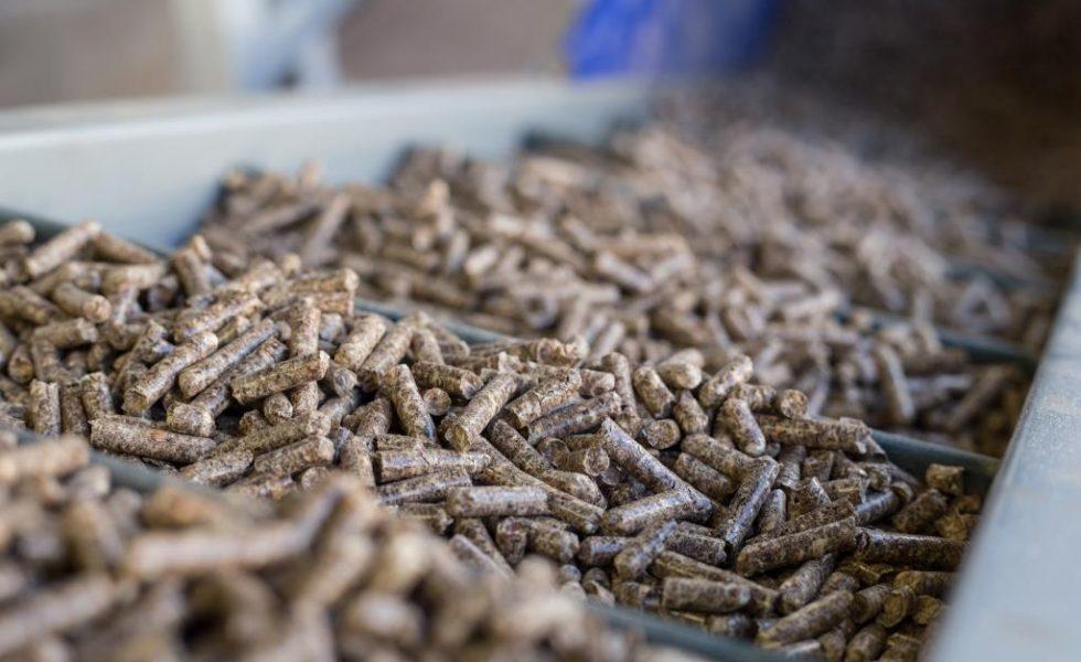 Producción récord de pellet de madera en España, con 714.000 toneladas
