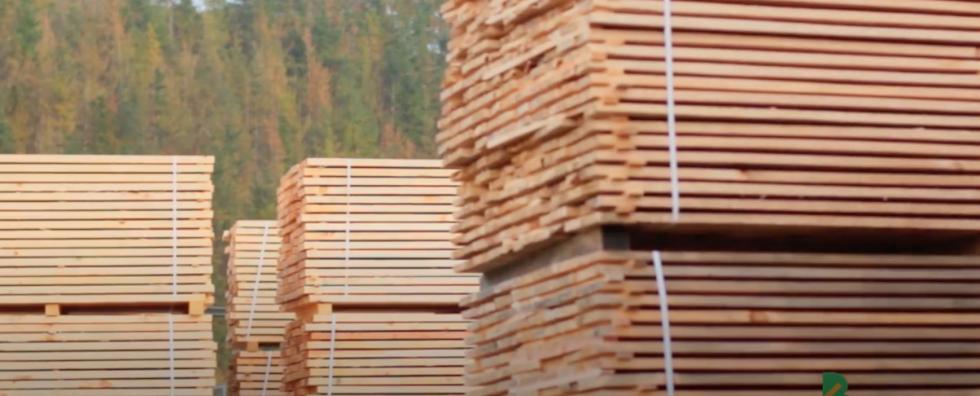 Las empresas de carpintería y mueble, principales afectadas en el sector forestal-madera por la crisis del COVID-19