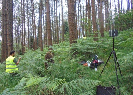 Jornada técnica: La gestión forestal orientada a la obtención de productos de calidad en masas de pino marítimo