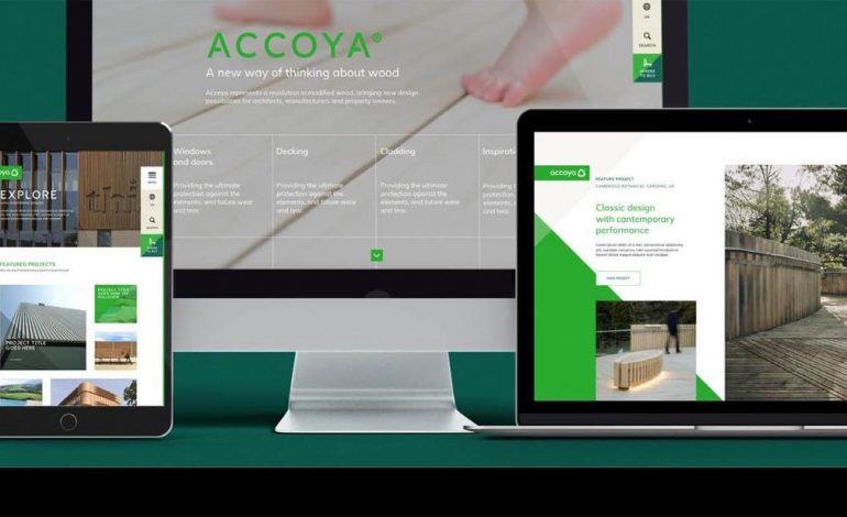 Nuevo sitio web de ACCOYA®