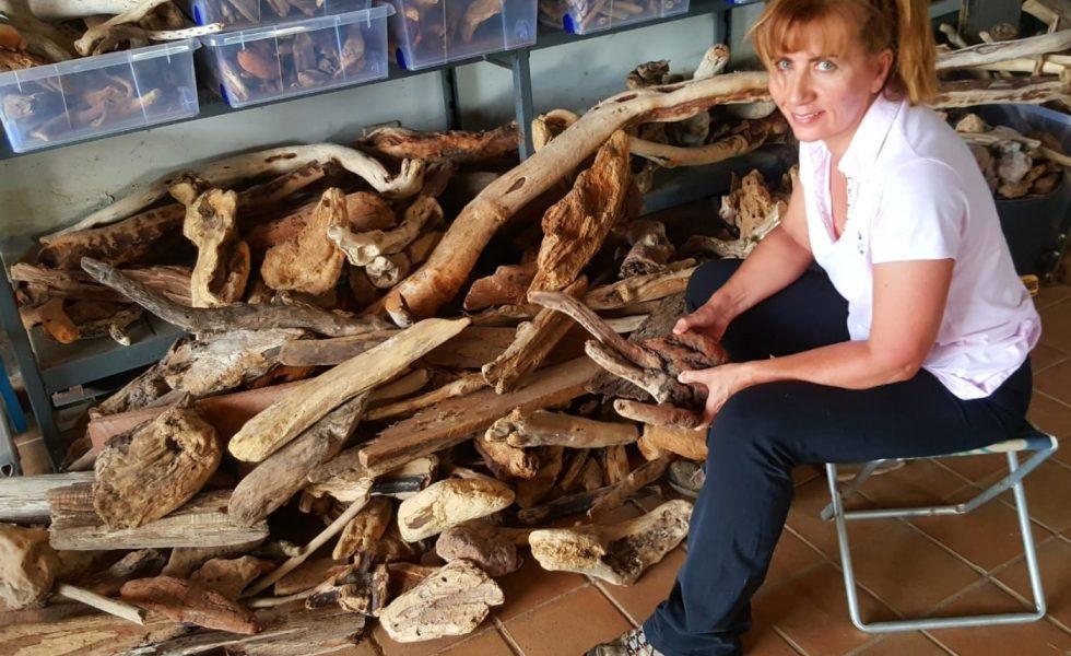 Una segunda vida para la madera de deriva