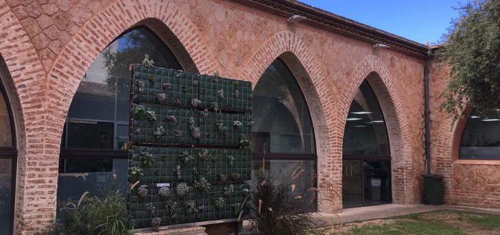 Cubierta verde con corcho como soporte, aprovechando sus características aislantes y bioabsorbentes