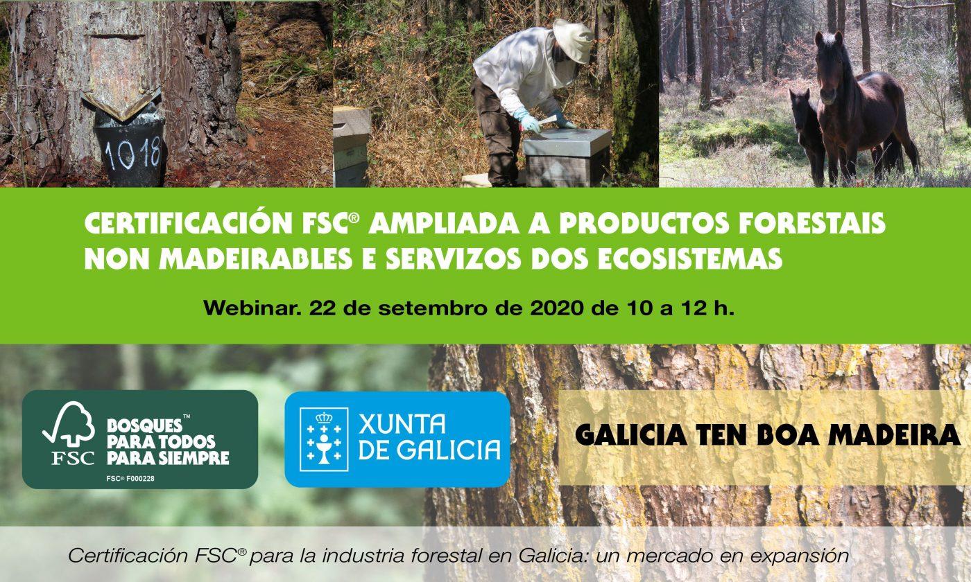 FSC organiza un webinar para difundir la gestión forestal sostenible en Galicia