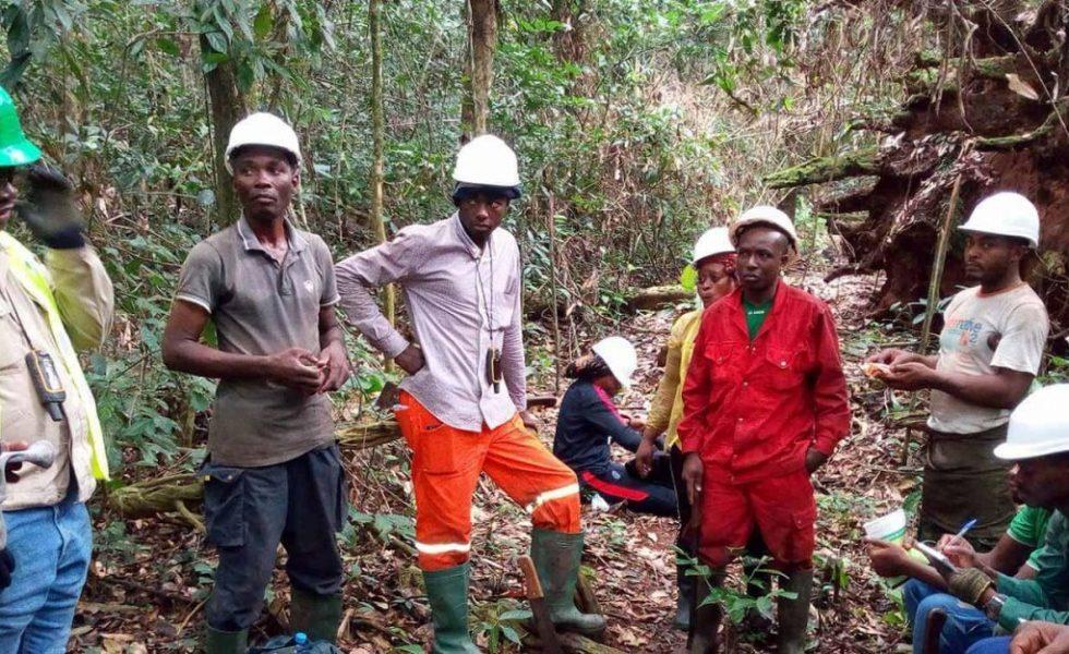ADEFAC, un programa de capacitación en el trabajo de la madera y gestión forestal sostenible en la Cuenca del Congo