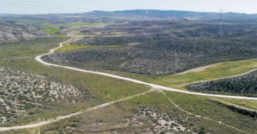 El Colegio de Ingenieros de Montes de Aragón denuncia la ilegalidad del Decreto de regulación de la RED NATURA 2000