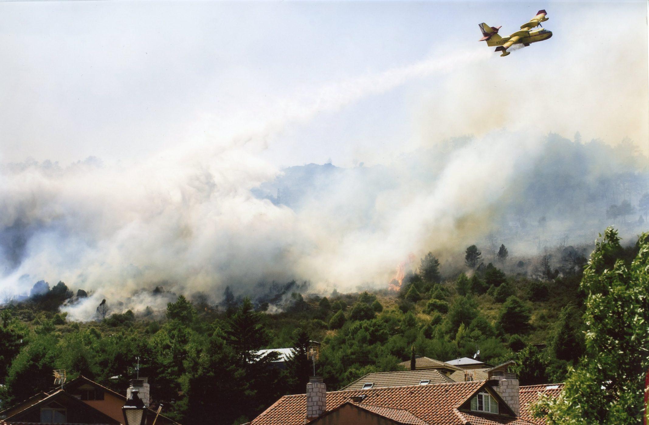 Disminuyen los incendios forestales en 2020