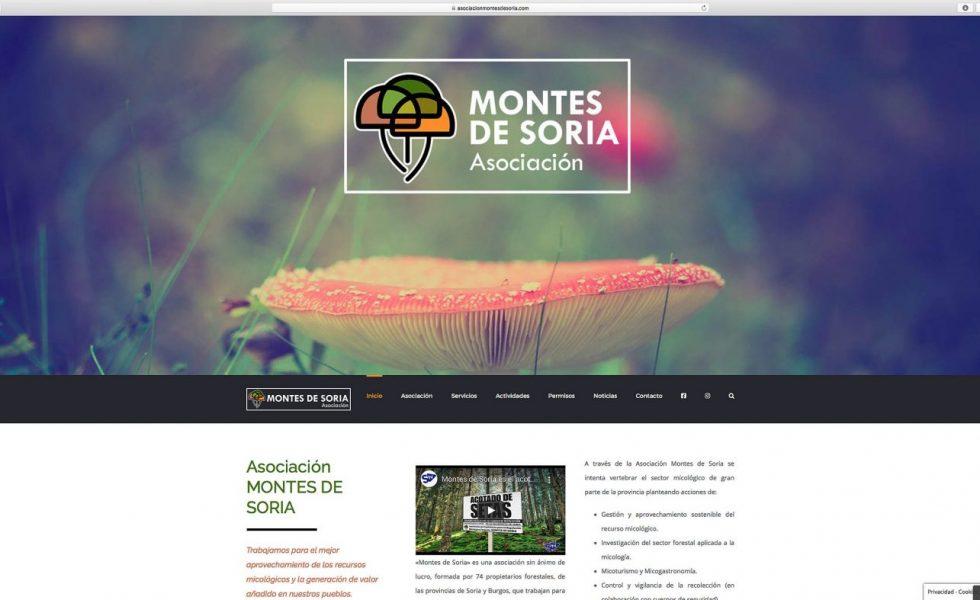 Nueva web de MONTES DE SORIA