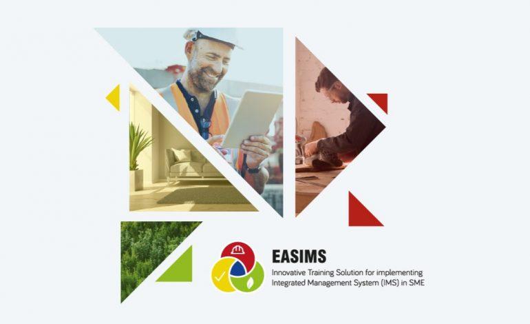 El proyecto europeo EASIMS ofrece un curso gratuito en Gestión de Procesos en Organizaciones