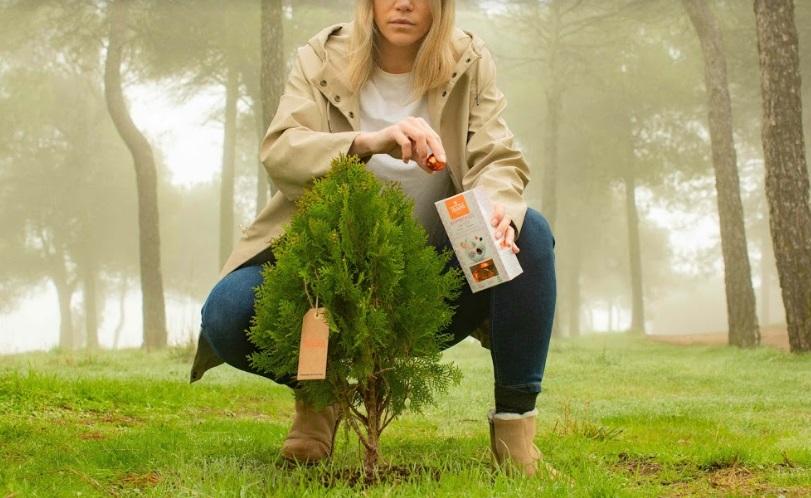 TRAPA consolida su compromiso con el medio ambiente con un proyecto para reforestar España
