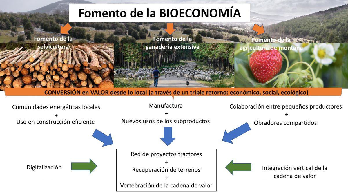 Presentan un proyecto para la recuperación económica de los municipios forestales de Soria