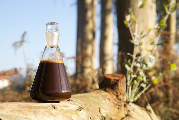 BETANZOS HB desarrolla un adhesivo ecológico derivado de la madera