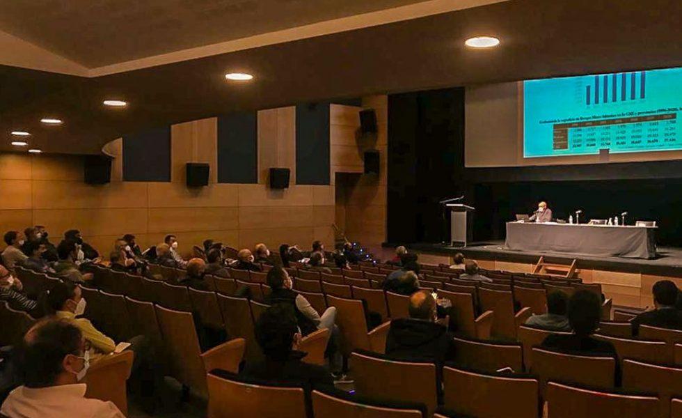 La Confederación de Forestalistas del País Vasco analiza el efecto ambiental de la plantación de eucaliptos