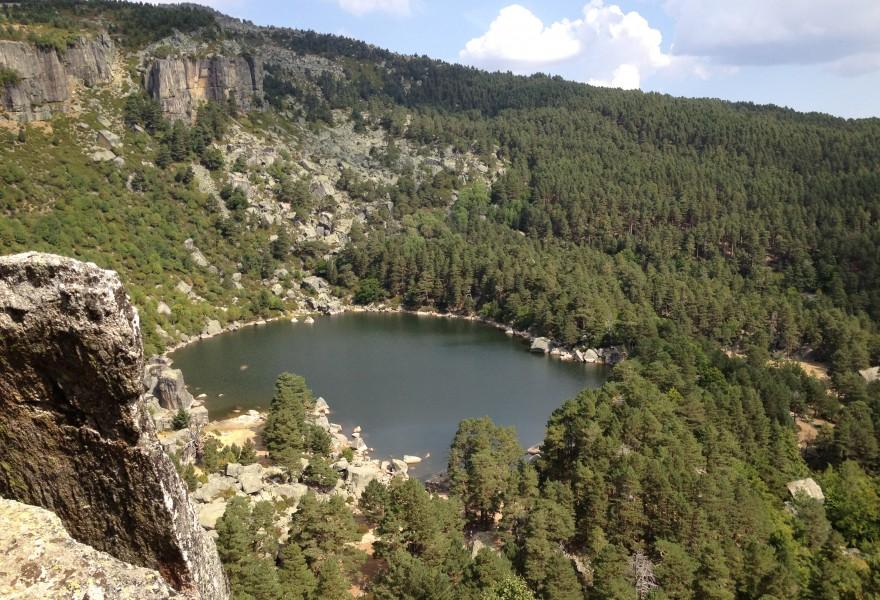 Los pinares sorianos se reivindican en la lucha contra el cambio climático
