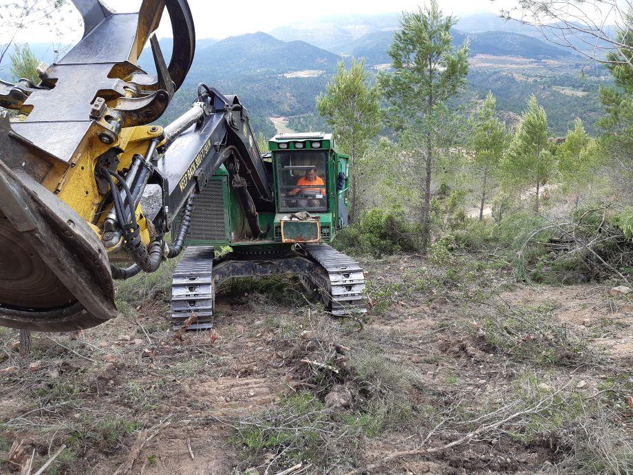 Más de 105.000 toneladas de biomasa producidas en un año de retos medioambientales