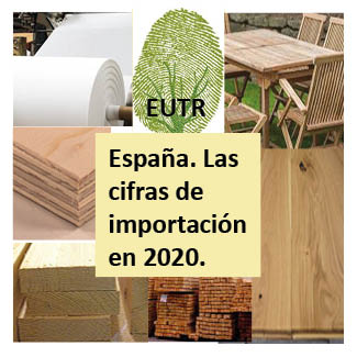 España importó en 2020 productos sometidos al EUTR por valor de más de 5.400 millones de euros