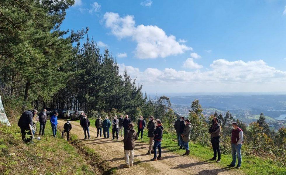 El Proyecto de Innovación para la productividad del cultivo de Eucalyptus globulus llega a su fin