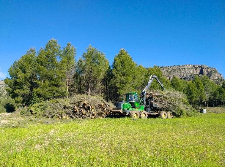 La gestión forestal hecha en Murcia comienza a tener un papel relevante frente al cambio climático