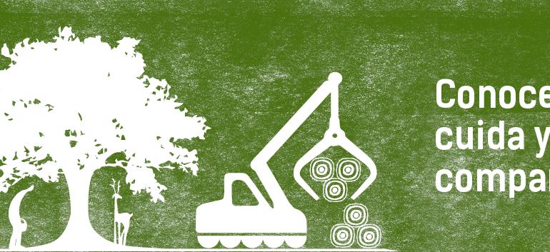 """""""La Mirada Forestal"""" acerca el sector forestal a la sociedad en Castilla y León"""