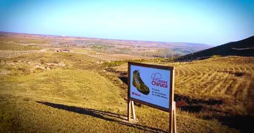 CHIRUCA ya lleva 20.000 árboles plantados en Bergasa