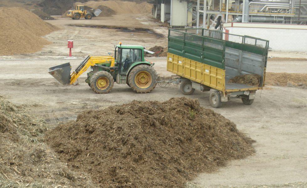 Lista en España la certificación definitiva de sostenibilidad de la biomasa para energía