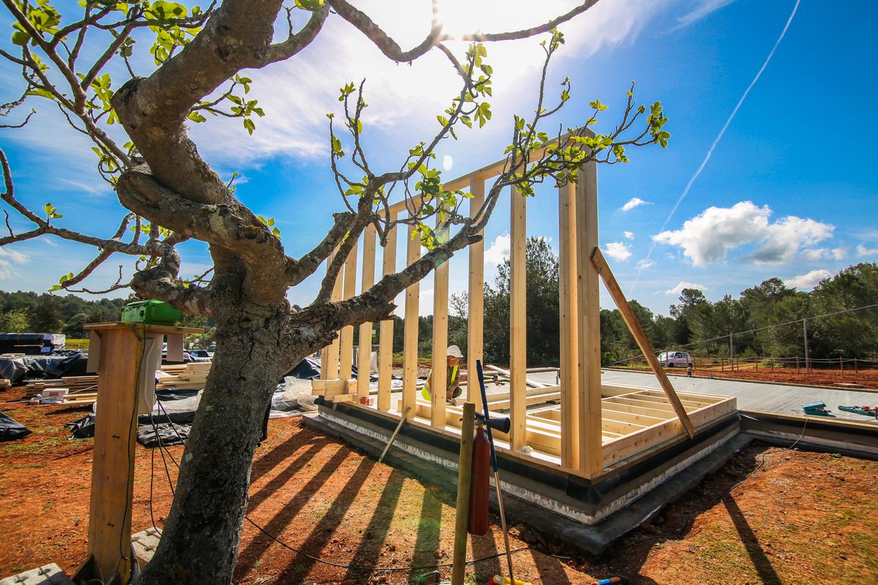 """""""Este es el momento de la madera en la construcción"""""""