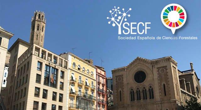 Reactivado el proceso de participación en el 8º Congreso Forestal Español